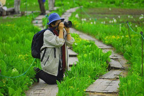 栂池自然園_0607_ha001.jpg