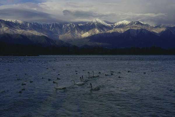 犀川ダム湖   3