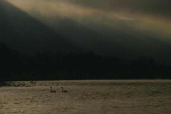 犀川ダム湖  6